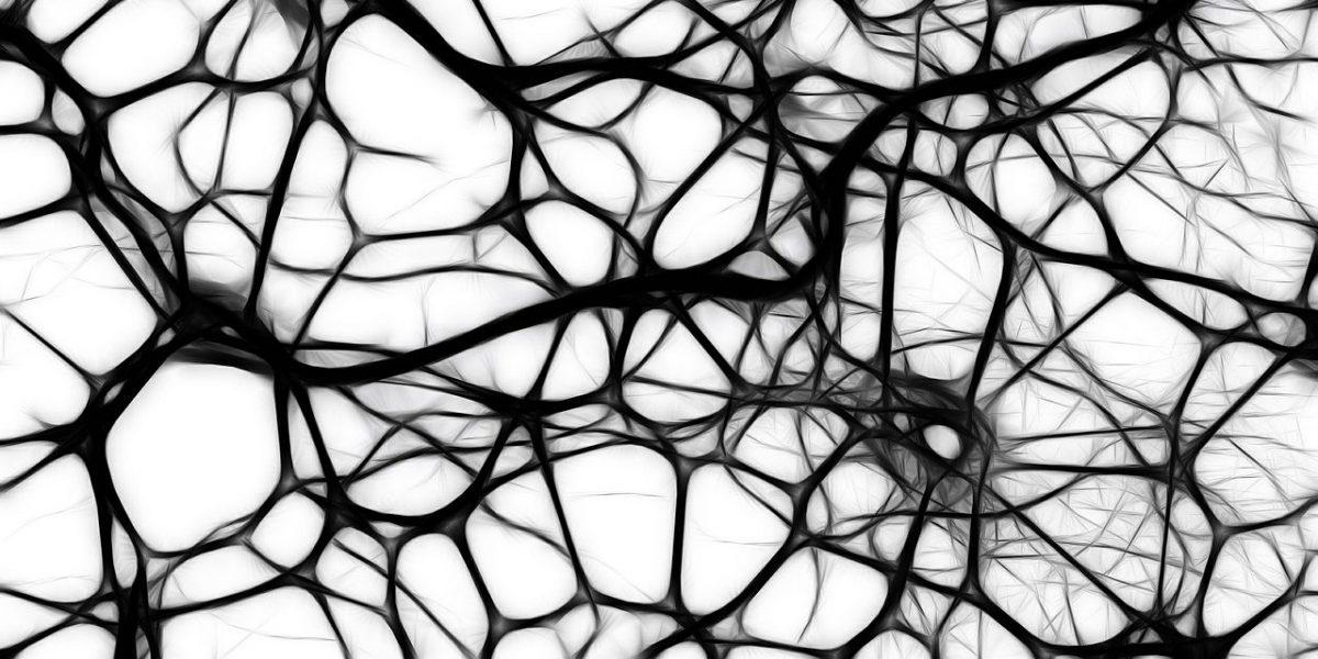 Нейронные сети — сервисы 2016