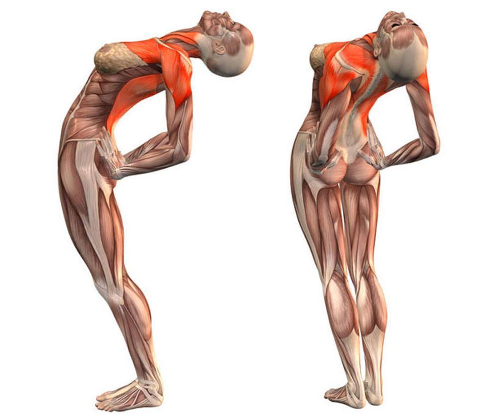 4 упражнения, которые облегчают жизнь