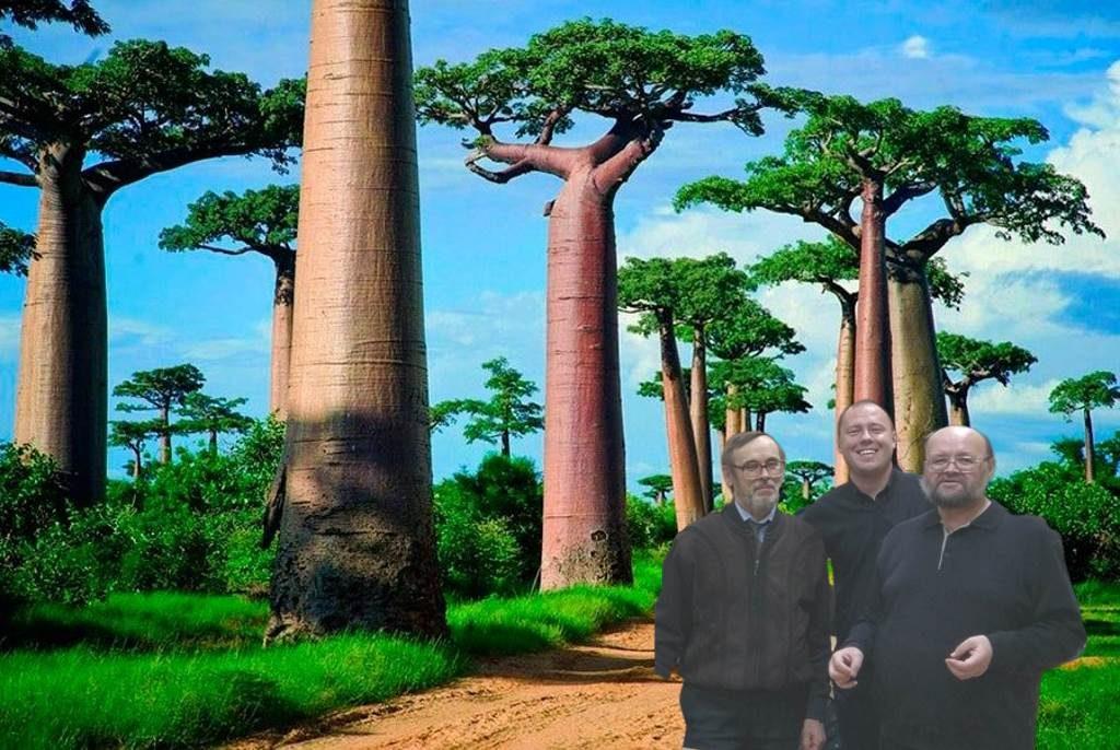 Тру-ля-ля, тру-ля-ля, Можем все за три рубля! Мадагаскар